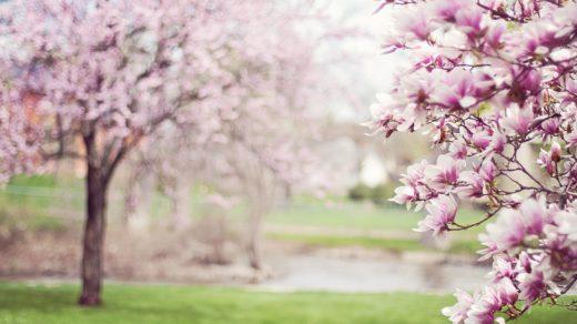 bahar depresyonunu atlatmak